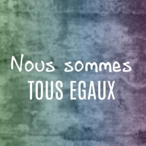 banner_LGBTQI_tousegaux_carre